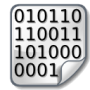 public_icones:binary-icon.png